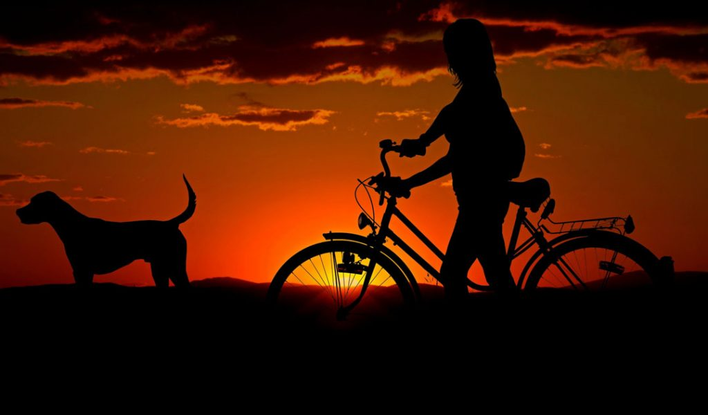 Ohne Licht Fahrrad Fahren